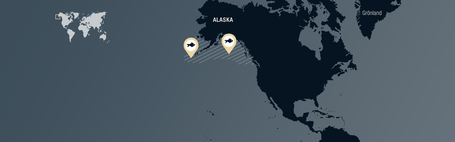 Nordostpazifik (Alaska, FAO 67) gefangen mit Kiemennetzen du vergleichbaren Netzen.